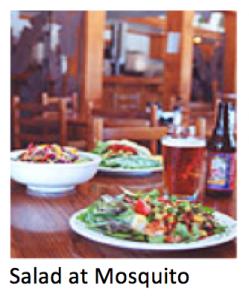 salad-mosquito