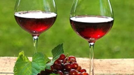 Top Wineries to Visit in Texas